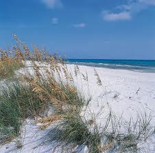 Ocean Dunes Home Plans