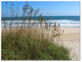 Brunswick Beach